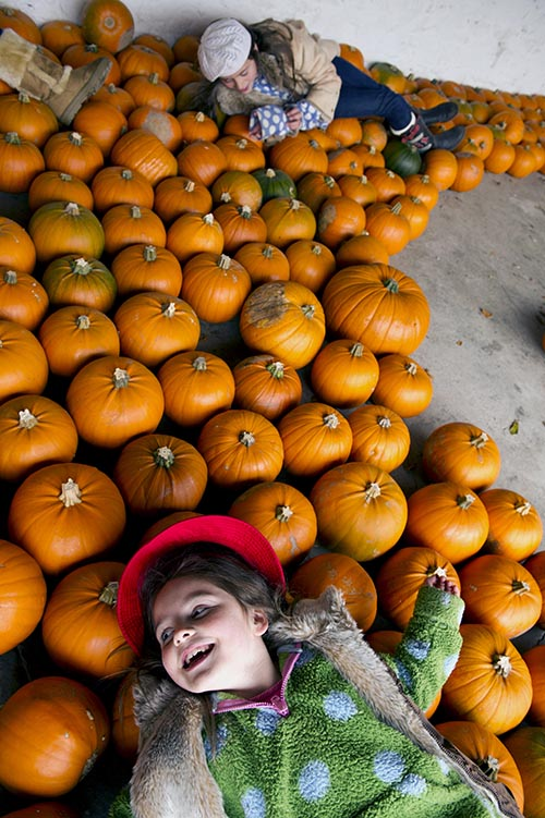 Children with the pumpkin crop at Rowallane Garden, County Down, in October.