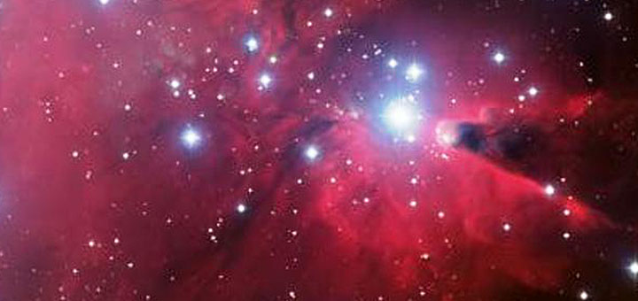the_stars_tonight_planetarium_littlebird_whatson
