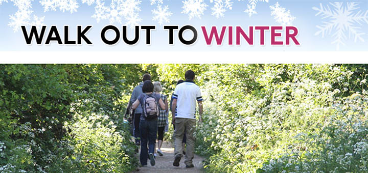 winter_walks_parkland_walk_littlebird_whatson