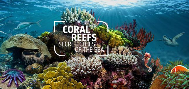 coralreefs