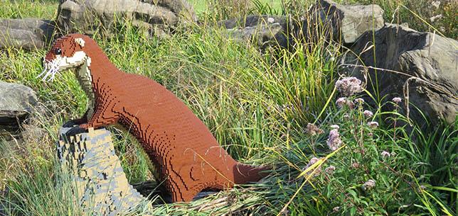 WWT-Otter
