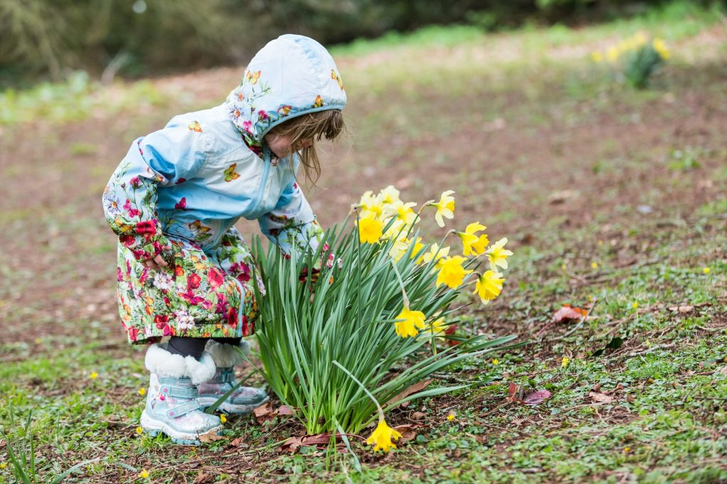 National Trust Annual Membership Easter