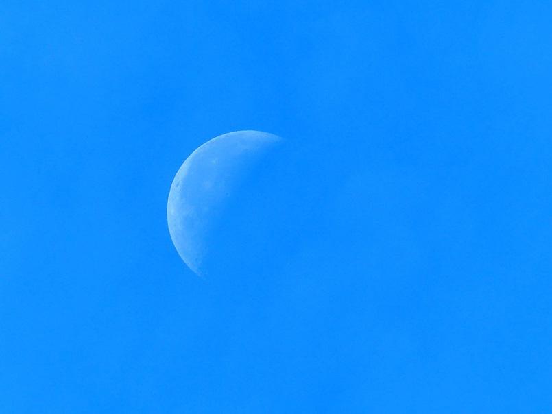 half-moon-187698_960_720
