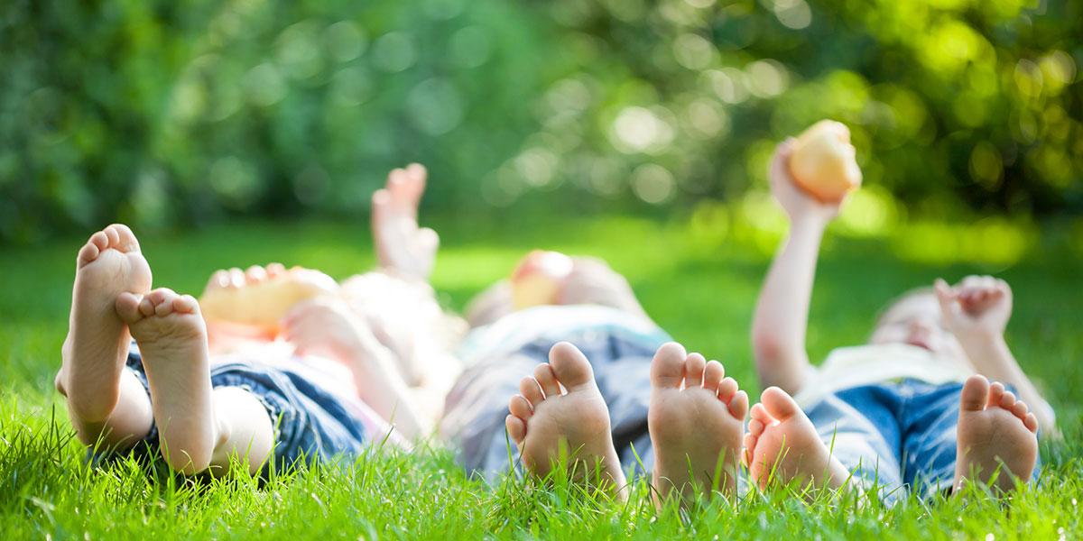 littlebird - fathers day picnic